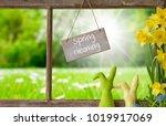 window  green meadow  spring... | Shutterstock . vector #1019917069