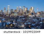 calgary downtown skyline at... | Shutterstock . vector #1019922049