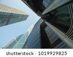 hong kong s.a.r.  china   hong... | Shutterstock . vector #1019929825