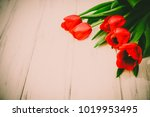 background of tulips on a wooden | Shutterstock . vector #1019953495