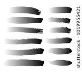 set of hand painted black brush ...   Shutterstock .eps vector #1019955421