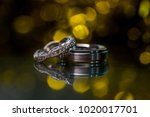 a pair of wedding rings with...   Shutterstock . vector #1020017701