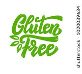gluten free. lettering phrase... | Shutterstock .eps vector #1020039634