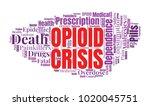 opioid crisis word cloud... | Shutterstock .eps vector #1020045751