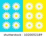 white daisy chamomile icon set. ... | Shutterstock .eps vector #1020052189