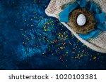 Easter Egg In A Nest  Blue...
