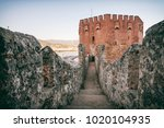 detail from red tower  kizil... | Shutterstock . vector #1020104935
