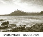 copy of old lithographic... | Shutterstock . vector #1020118921