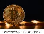 golden bitcoin as main digital... | Shutterstock . vector #1020131449