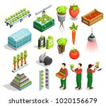 hydroponic and aeroponic... | Shutterstock .eps vector #1020156679