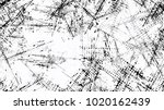 black and white halftone dots...   Shutterstock .eps vector #1020162439