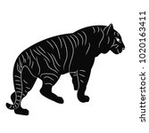 silhouette tiger is coming   Shutterstock . vector #1020163411