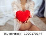 young beautiful pregnant woman... | Shutterstock . vector #1020170149