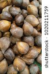 Small photo of delicious salak fruit