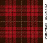brown and red tartan plaid... | Shutterstock .eps vector #1020216265