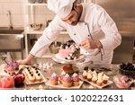 portrait of confectioner...   Shutterstock . vector #1020222631