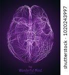 vector violet illustration of... | Shutterstock .eps vector #1020243997