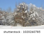 snow covered moscow. landscaped ... | Shutterstock . vector #1020260785