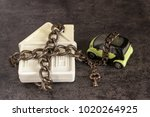 small white house  car  chain... | Shutterstock . vector #1020264925