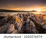 kings beach  south australia | Shutterstock . vector #1020276574