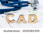 cad acronym or abbreviation to... | Shutterstock . vector #1020281545