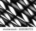 vector illustration graphic... | Shutterstock .eps vector #1020282721