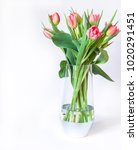 spring composition with fresh... | Shutterstock . vector #1020291451