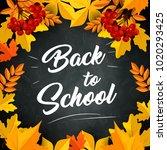 back to school poster of autumn ... | Shutterstock .eps vector #1020293425