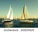 racing yacht in the... | Shutterstock . vector #102029629