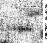 grunge texture black and white. ... | Shutterstock . vector #1020302509