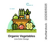 vegetables in the basket line... | Shutterstock .eps vector #1020305035