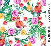 lemonade and flamingo... | Shutterstock . vector #1020305974