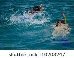 pair snorkeling in red sea | Shutterstock . vector #10203247