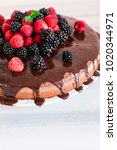chocolate cake with berries ... | Shutterstock . vector #1020344971