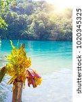 blue lagoon on jamaica | Shutterstock . vector #1020345325