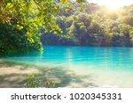 blue lagoon on jamaica | Shutterstock . vector #1020345331