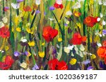 red poppies flower field  ... | Shutterstock . vector #1020369187