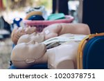 cpr doll   first aid training... | Shutterstock . vector #1020378751