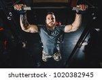 portrait view of strong active... | Shutterstock . vector #1020382945
