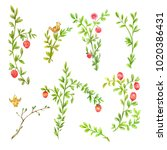spring branches with pink... | Shutterstock . vector #1020386431
