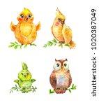 watercolor funny little birds...   Shutterstock . vector #1020387049