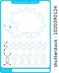 hedgehog. preschool worksheet... | Shutterstock .eps vector #1020390124