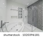 apartment bathroom interior... | Shutterstock . vector #1020396181