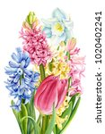 bouquet of colorful spring... | Shutterstock . vector #1020402241