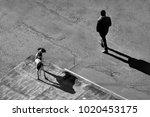 black and white street... | Shutterstock . vector #1020453175