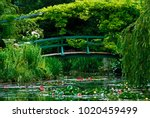 the garden and the japanese... | Shutterstock . vector #1020459499
