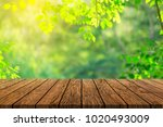 wood floor with blurred trees... | Shutterstock . vector #1020493009