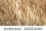 brown soft wool texture...   Shutterstock . vector #1020516064