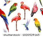 vector hand drawn seamless ... | Shutterstock .eps vector #1020529165