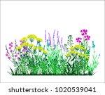 Garden Landscapes  Summer And...